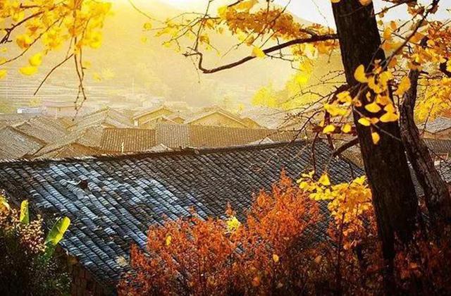 #广州出发#坐房车,在南雄遇见秋